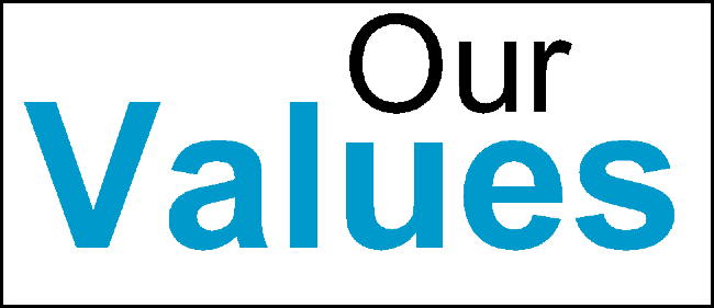 Silicon Valley Research Group Values